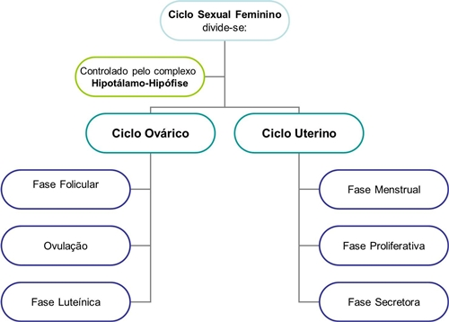 dolor ovárico pre-ciclo